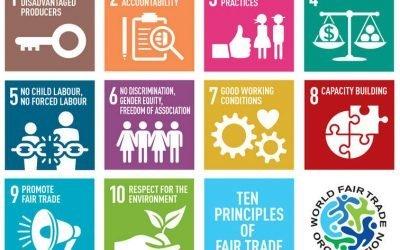 Marketing etico, social & green brand identity